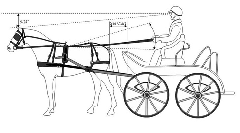 4 wheel carts, like marathon, equines bare very little weight from shaft  and cart  shaft swing up and down will match plainty equine sizes